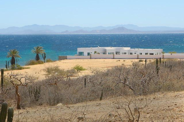 Montemar View Lot Blk3 Lot L2, East Cape, BS  (MLS #19-1176) :: Own In Cabo Real Estate