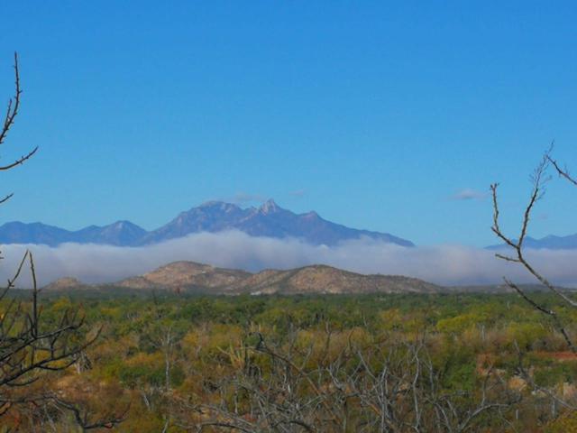 1 Rancho Laguna Lot D, East Cape, BS  (MLS #19-1217) :: Los Cabos Agent