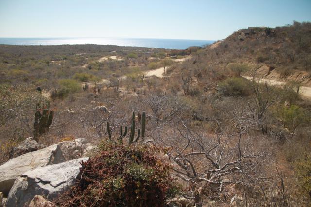 Carretera San Jose Los Frailes, San Jose del Cabo, BS  (MLS #19-1220) :: Los Cabos Agent
