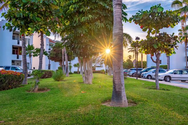 Rtno Punta Palmilla #305, San Jose del Cabo, BS  (MLS #19-1236) :: Los Cabos Agent