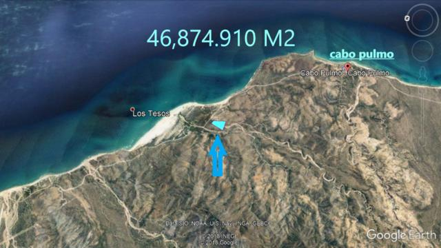 Cabo Pulmo, East Cape, BS  (MLS #19-1341) :: Ronival