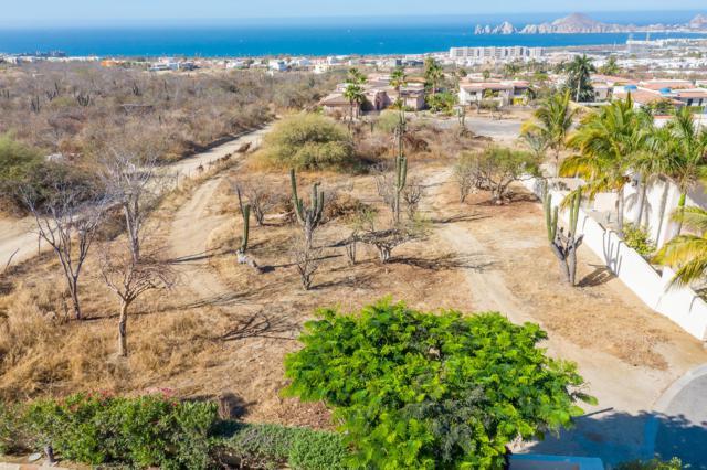 Apalusa St Lot #14, Cabo Corridor, BS  (MLS #19-1372) :: Los Cabos Agent