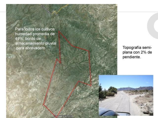 Sin Nombre, La Paz, BS  (MLS #19-1539) :: Coldwell Banker Riveras