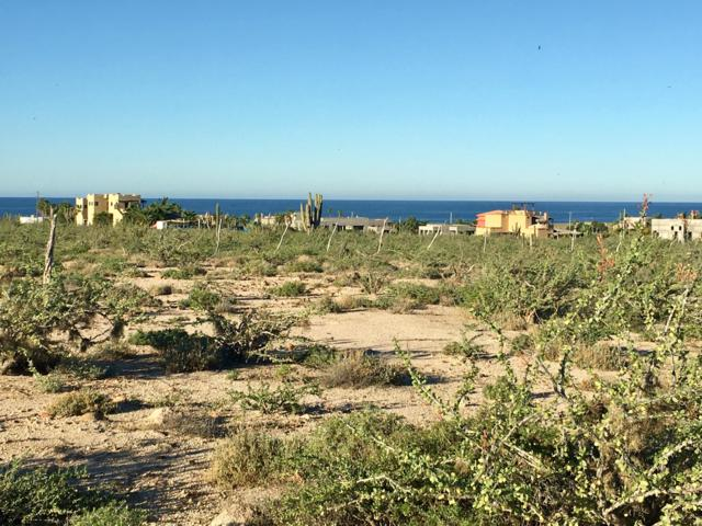 Calle Pitaya, Pacific, BS  (MLS #19-159) :: Los Cabos Agent