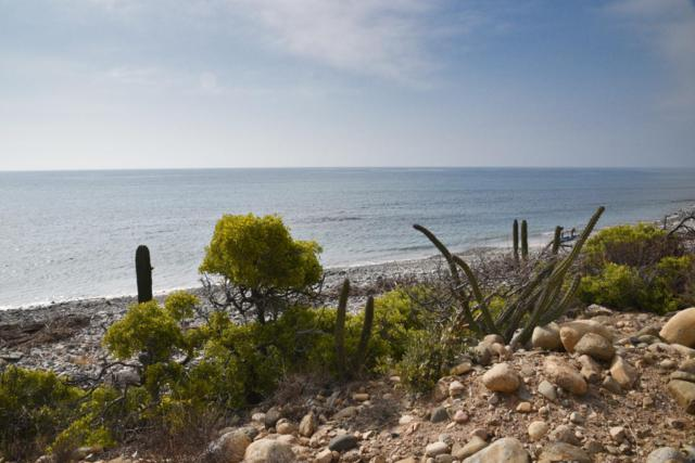 Montemar Beachfront Lot 16, East Cape, BS  (MLS #19-1590) :: Los Cabos Agent