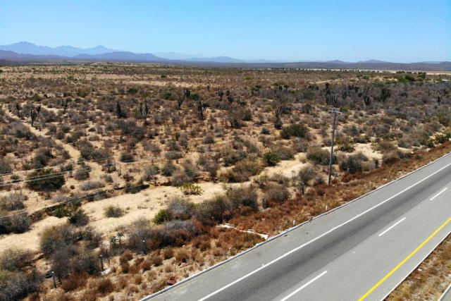 Highway, Pacific, BS  (MLS #19-1603) :: Los Cabos Agent