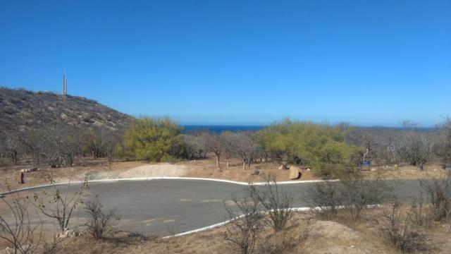 El Camino Real, East Cape, BS  (MLS #19-1621) :: Los Cabos Agent