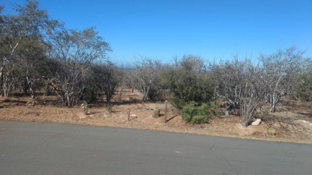 El Camino Real, East Cape, BS  (MLS #19-1622) :: Los Cabos Agent