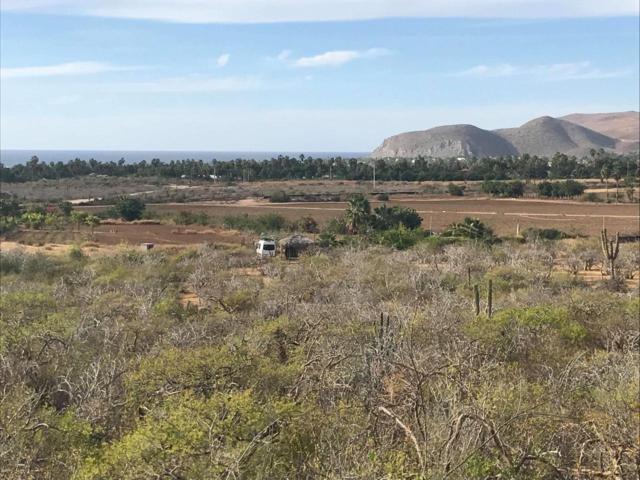 Cerro Gavilan, Pacific, BS  (MLS #19-1654) :: Los Cabos Agent