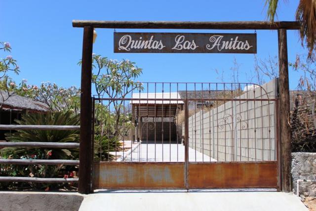 Calle Gaviotas Y Delfin, East Cape, BS  (MLS #19-1772) :: Los Cabos Agent