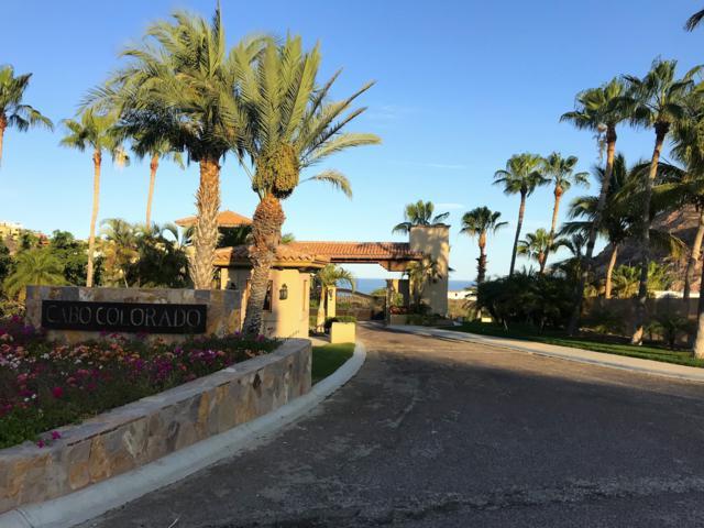 39 Paseo Del Rey, San Jose Corridor, BS  (MLS #19-1780) :: Los Cabos Agent