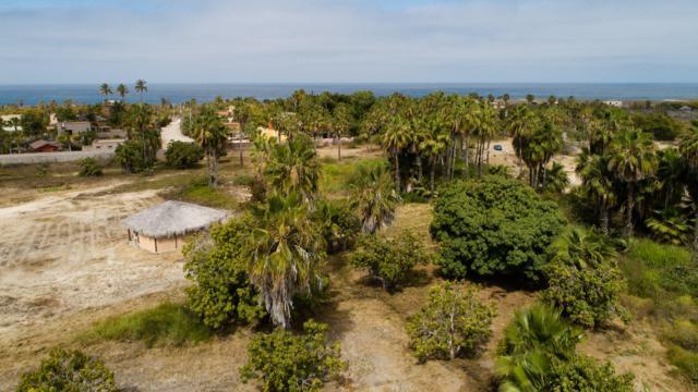 Todos Santos, Pacific, BS  (MLS #19-1812) :: Ronival