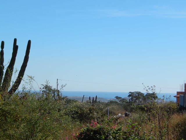 Lomas Del Brisas Del Pacifico, Cabo San Lucas, BS  (MLS #19-1887) :: Los Cabos Agent
