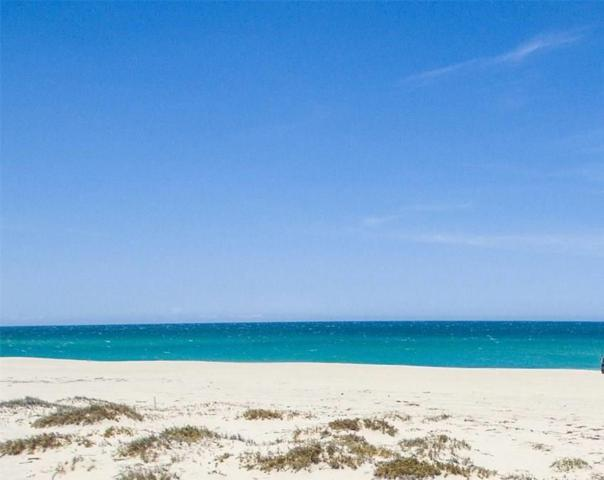 lighthouse East Cape, East Cape, BS  (MLS #19-1947) :: Own In Cabo Real Estate