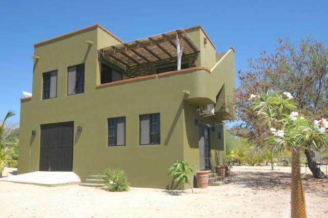 Palo Blanco Area, East Cape, BS  (MLS #19-1966) :: Los Cabos Agent