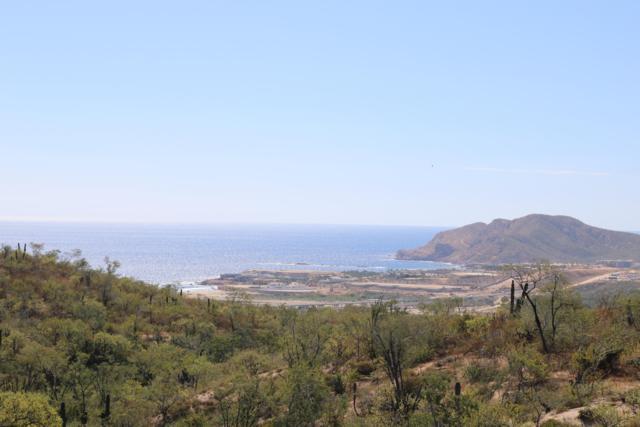 Altos Del Tule, San Jose Corridor, BS  (MLS #19-210) :: Los Cabos Agent