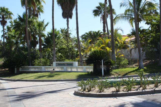 23 Calle Los Altos, San Jose Corridor, BS  (MLS #19-2103) :: Los Cabos Agent