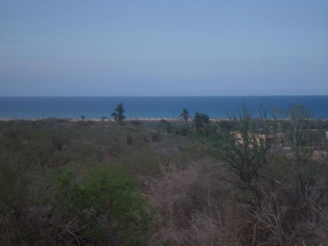La Ribera- Cabo Pulmo Highway, East Cape, BS  (MLS #19-240) :: Los Cabos Agent