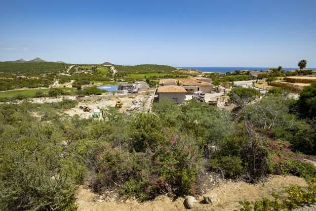 Paseo De Los Pescadores, San Jose del Cabo, BS  (MLS #19-2459) :: Los Cabos Agent