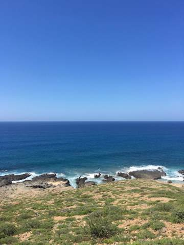 Best Ocean View Lot 2648, Pacific, BS  (MLS #19-2465) :: Los Cabos Agent