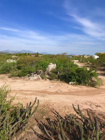 Mza S, Lot #2, East Cape, BS  (MLS #19-2478) :: Los Cabos Agent