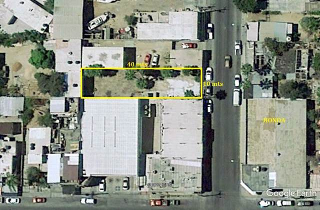 Lote Mildred, Cabo San Lucas, BS  (MLS #19-2529) :: Ronival