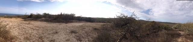 Camino Cabo Del Este, East Cape, BS  (MLS #19-2629) :: Los Cabos Agent
