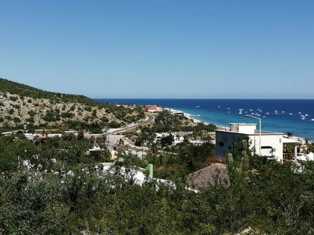 Buenavista, East Cape, BS  (MLS #19-2675) :: Los Cabos Agent