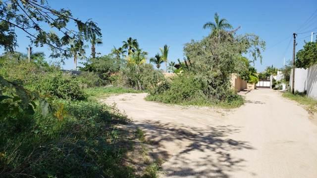 Cabo Vista, Cabo Corridor, BS  (MLS #19-2819) :: Los Cabos Agent
