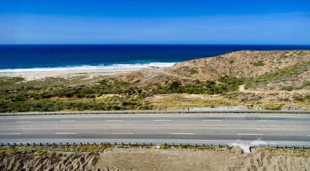 Demasias Sn Jacinto Km 76, Pacific, BS  (MLS #19-2890) :: Los Cabos Agent