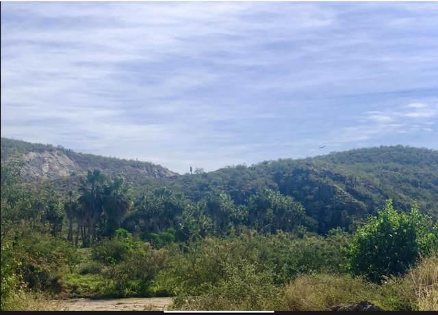 Carretera La Paz, Pacific, BS  (MLS #19-2898) :: Los Cabos Agent