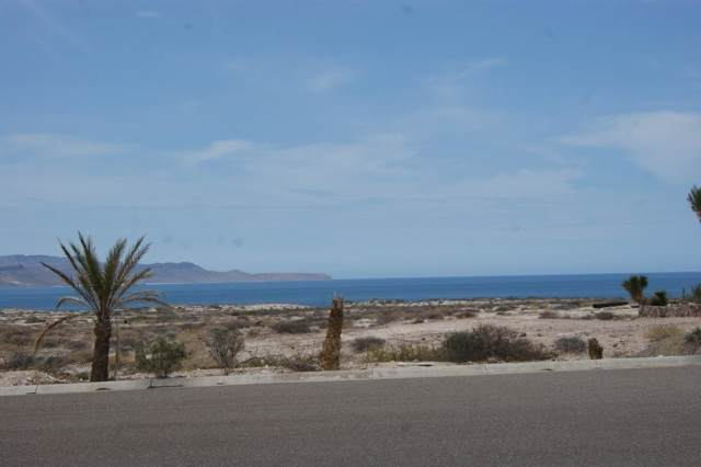 Maravia, La Paz, BS  (MLS #19-2922) :: Own In Cabo Real Estate