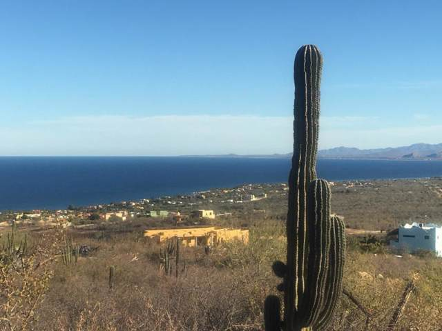 Las Brisas Vista Grande Lot 25, East Cape, BS  (MLS #19-2987) :: Los Cabos Agent