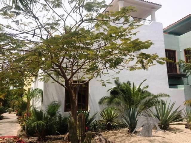 Avenida Agua Tranquila, Loreto, BS  (MLS #19-3007) :: Own In Cabo Real Estate