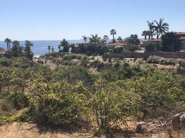 218 Camino De La Palma, Cabo Corridor, BS  (MLS #19-3017) :: Los Cabos Agent