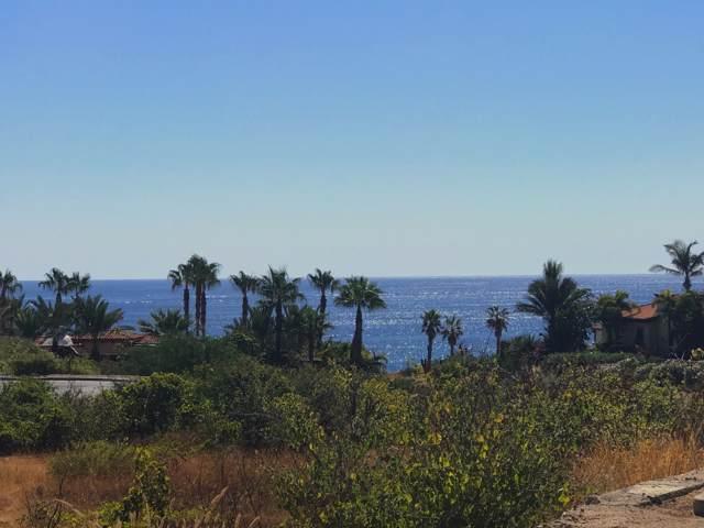 219 Camino De La Palma, Cabo Corridor, BS  (MLS #19-3018) :: Los Cabos Agent