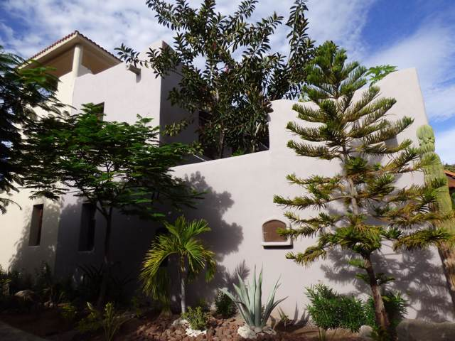 Calle Duval, Loreto, BS  (MLS #19-3022) :: Los Cabos Agent