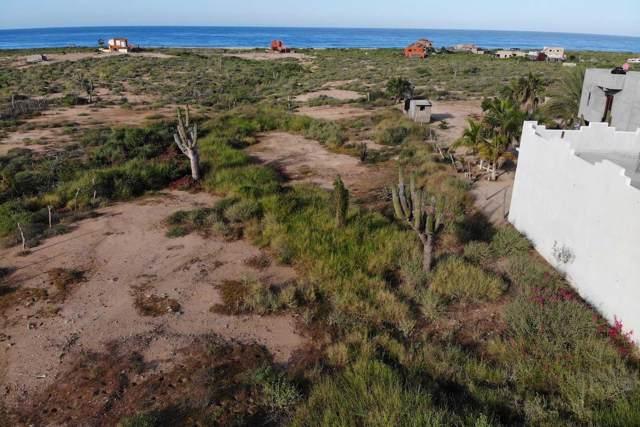 Highway 19, Pacific, BS  (MLS #19-3049) :: Los Cabos Agent