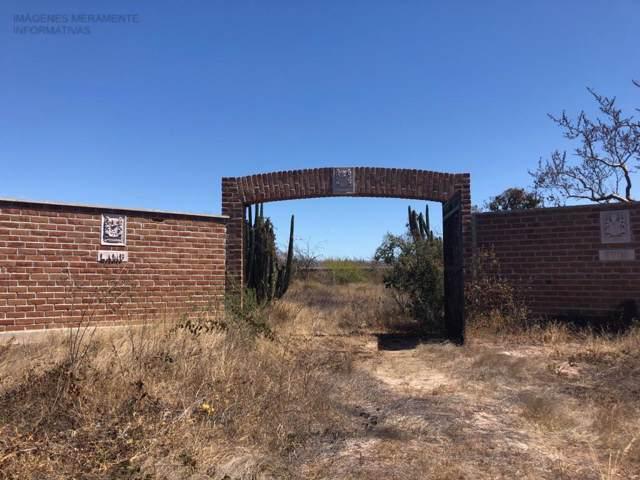 Predio Novillo, La Paz, BS  (MLS #19-3058) :: Own In Cabo Real Estate