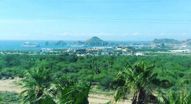 Luna Del Tezal #202, Cabo Corridor, BS  (MLS #19-3104) :: Los Cabos Agent