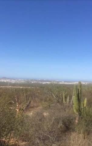 No One, Cabo San Lucas, BS  (MLS #19-3169) :: Los Cabos Agent