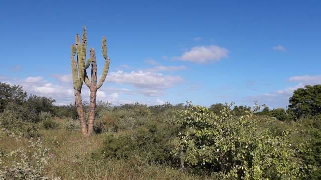 Lote De Terreno Urbano, East Cape, BS  (MLS #19-3177) :: Own In Cabo Real Estate