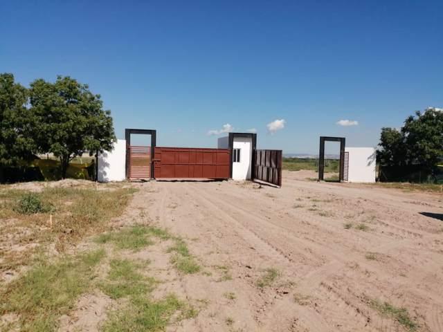Centenario, La Paz, BS 07111 (MLS #19-3200) :: Own In Cabo Real Estate