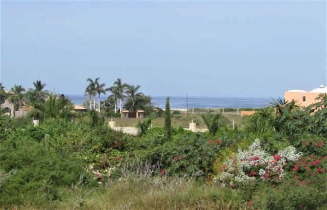 n/a Tierra Tranquila N/A, Pacific, BS  (MLS #19-3201) :: Los Cabos Agent