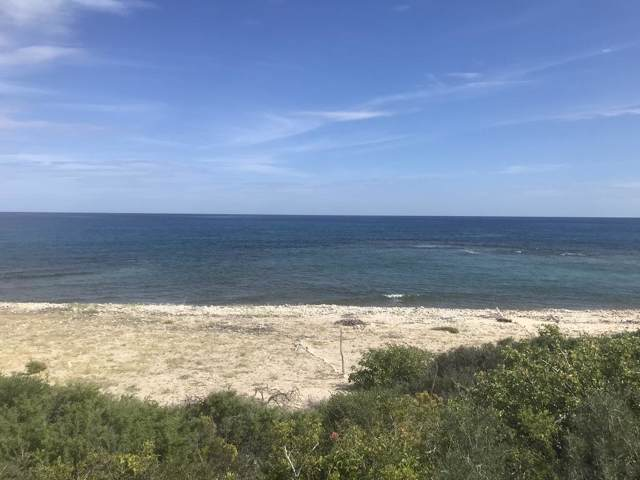 Beachfront Lot El Cardonal, East Cape, BS  (MLS #19-3216) :: Own In Cabo Real Estate