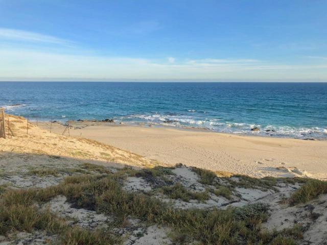 Playa Tortuga, Mza 1, Lot #14, East Cape, BS  (MLS #19-322) :: Own In Cabo Real Estate