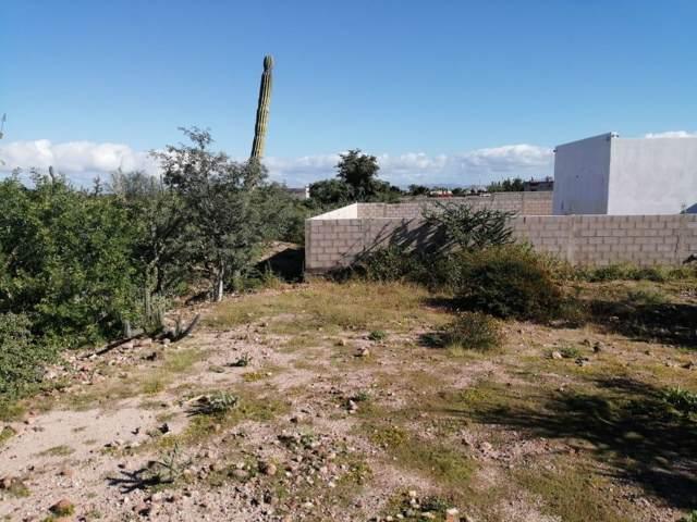 Calle Nueve, La Paz, BS  (MLS #19-3339) :: Ronival