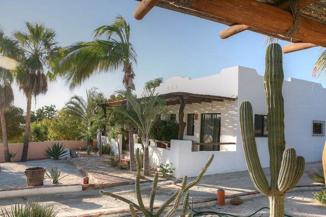 On Calle De Cardonal, East Cape, BS  (MLS #19-3403) :: Los Cabos Agent