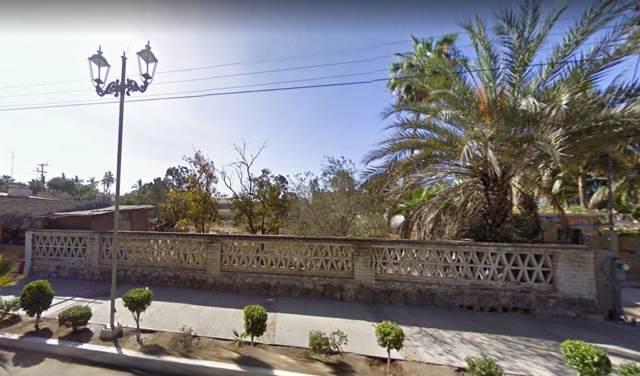 Calle H. Colegio Militar, Pacific, BS  (MLS #19-3447) :: Los Cabos Agent