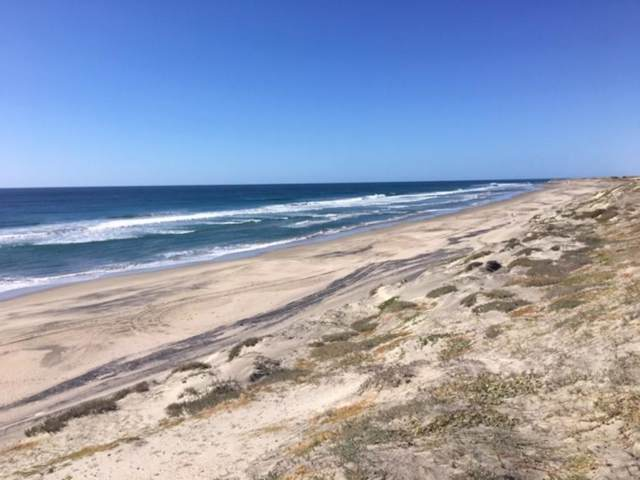 Accesso S/N, Pacific, BS  (MLS #19-3508) :: Own In Cabo Real Estate